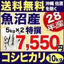 新米 28年 特撰 新潟県 魚沼産コシヒカリ 10kg (5kg×2) 米 【送料無料】(沖縄・佐渡を除く)