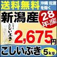 新米 28年 新潟県産こしいぶき 5kg 【送料無料】(沖縄・佐渡を除く)