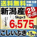 こしいぶき 15kg(5kg×3) H28年新潟産 米 【送料無料】(沖縄・佐渡を除く)
