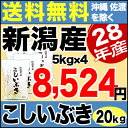 こしいぶき 20kg(5kg×4) H28年新潟産 米 【送料無料】(沖縄・佐渡を除く)
