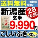 28年 新潟県産こしいぶき 30kg 玄米【送料無料】(一部地域を除く)