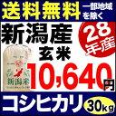 新米 28年産 新潟産コシヒカリ 30kg 玄米 蒲原【送料無料】(一部地域を除く)
