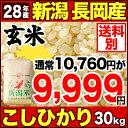 新潟県長岡産コシヒカリ 30kg 玄米 H28年産 米 【送料別】【お盆セール!】