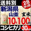 新潟産コシヒカリ 山並 30kg 玄米 H28年産 米 【送料別】