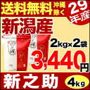 【新米】新潟産 新之助 4kg(2kg×2袋) 平成29年産 新米【送料無料】(沖縄を除く)