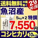 【新米】魚沼産コシヒカリ 特選 10kg(5kg×2) 29年産 新潟産 米 【送料無料】(沖縄を除く)