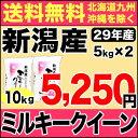 ミルキークイーン 10kg(5kg×2) 29年産 新潟産 米 【送料無料】(北海道、九州、沖縄除く)