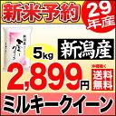 【新米予約】新潟産ミルキークイーン 5kg 平成29年産 新米【送料無料】(沖縄を除く)