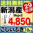 【新米】こしいぶき 10kg(5kg×2) 29年産 新潟産 米 【送料無料】(沖縄を除く)