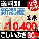【新米】こしいぶき 30kg 玄米 29年産 新潟産 米 【送料別】
