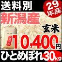 ひとめぼれ 30kg 玄米 29年産 新潟産 米 【送料別】