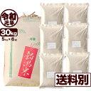 岩船産コシヒカリ 30kg 玄米 令和元年産 新潟産 米 小分け6袋 【一等米使用】【送料別】
