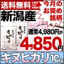 キヌヒカリ10kg(5kg×2)30年産新潟産米【送料無料】(北海道、九州、沖縄除く)【今月のお奨め銘柄】