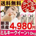 新米新潟県産 ミルキークイーン 25年産 10kg (5kg×2袋)みるきーくいーん【全国送料無料】