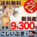 新潟県産 こしいぶき 30kg(玄米) 27年産【送料無料(一部地域を除く)】