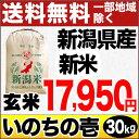 新米 28年 ありがとう三米 新潟産いのちの壱 30kg 玄米【送料無料(一部地域を除く)】