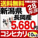新潟県長岡産コシヒカリ 10kg(5kg×2) H28年産 米 【送料無料】(沖縄を除く)
