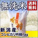 新潟産 コシヒカリ 無洗米吟精 5kg 29年産【送料無料】(沖縄を除く)