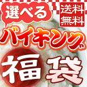 2013年 新春初売り!中身が選べるワクワクバイキング福袋【fkbr-g】