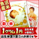 【29年産 魚沼産コシヒカリ】抱っこできる赤ちゃんプリント 出産内祝い 米 出生体重米 名入れ 内祝い 【送料別】