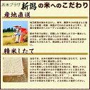 新潟県十日町名産の手づくり漬物(漬け物)高長醸造場十日町名物 ががなんばん(カップ)140g