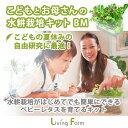 リビングファーム LFS-370 こどもとお母さんの水耕栽培...