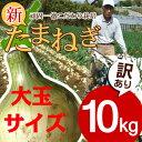 【送料無料】淡路島新玉ねぎ【訳あり大玉サイズ】10キロ☆ たまねぎ タマネギ  淡路