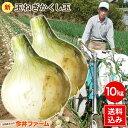 淡路島産新たまねぎ #かくし玉10キロ#...