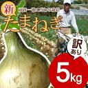 【送料無料】【訳あり】淡路島新たまねぎ5キロ 【タマネギ】た...