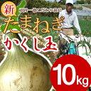 【予約商品】淡路島産新たまねぎ #かくし玉10キロ#【5キロ×2】玉ねぎ 玉ネギ タマ