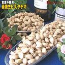 【無塩】新鮮素焼きピスタチオ超徳用453g