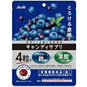 キャンディサプリ 1日分の鉄 64g アサヒG食品 菓子 asahi