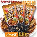 徳島ラーメン 春陽軒 【棒麺2食】入×3袋(ネギ入り)【ゆうメール1000】