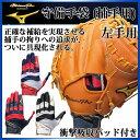 ミズノ 守備用グローブ ミズノプロ 守備手袋 (捕手用) 1EJED160 MIZUNO 野球手袋 衝撃吸収パッド付き【左手用】