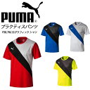 プーマ サッカー ftblTRG Graphic Shirt PUMA 655152 プラクティスシャツ【メンズ】