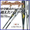MIZUNO (ミズノ) 野球 2TH269 中学硬式用 金属バット ビクトリーステージ Vコング02 金属製 83cm 2TH26930