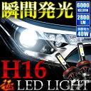 NZE/NRE160系 カローラ フィールダー [H24.5〜]極 LEDライト H16(H11兼用) フォグランプ 12V車用 40W 2800LM 6000K12V 40W LEDフォグランプ フォグライト LEDライト