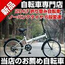 自転車 折りたたみ クロスバイク サイクル 別売りですがパナソニックLEDブラックをセットにすることもできます折りたたみ自転車 20インチ カゴ付 Raychell R-241N 20インチ折りたたみ自転車 シルバー シマノ6段変速 ノーパンクタイヤ カギ・カゴ・ライト付き