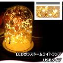 LEDガラスドームライトランプ USBタイプ(暖白色照明・暖黄色照明)