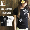 フラダンス レディース シンプル プルメリア Tシャツ