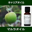 マルラオイル(オーガニック)[未精製] 20mlMarula Organic Oil〜 キャリアオイル(植物油/ベースオイル)〜 【IST】