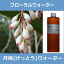 【大容量500ml/詰替用】月桃(げっとう)ウォーター[月桃水] 500ml(ハイドロゾル / 芳香蒸留水)※月桃独特の薬草が焦げたような香りがありますが、慣れ...