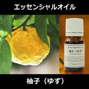 柚子イメージ