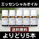 アロマオイル アロマ エッセンシャルオイル 精油【送料無料/...