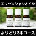 アロマオイル アロマ エッセンシャルオイル【送料無料/全40...