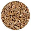 [生活の木]有機ミルクシスル 1kg