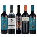 赤ワインセット 送料無料 フルボディ ワインセット 南米 アルゼンチンワイン 5本 カベルネソーヴィニヨン マルベック