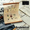 Anatomical [ アナトミカル ]  ■  タペストリー | ウォールデコ【 インターフォルム 】