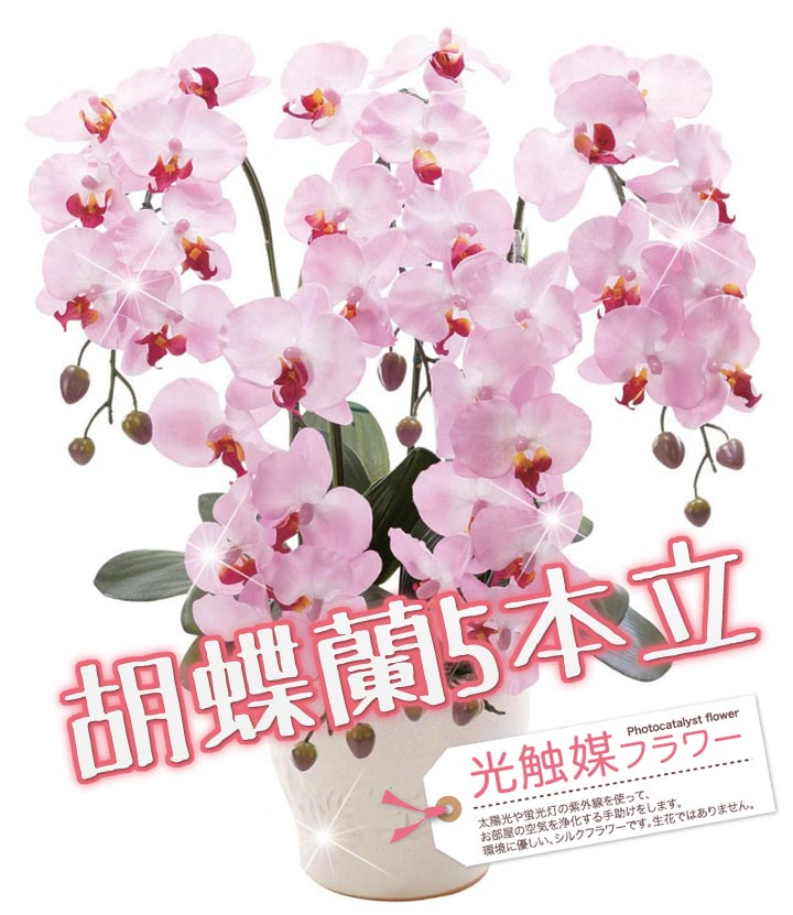 胡蝶蘭5本立[LK1201] 光触媒消臭フラワー/造花/空気清浄/プレゼント