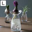 花器 AQUA CULTURE VASE Lサイズ ガラス 花瓶 おしゃれ KINTO キントー (